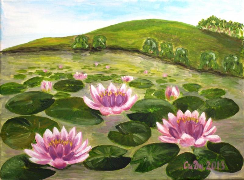 Vodni lilii