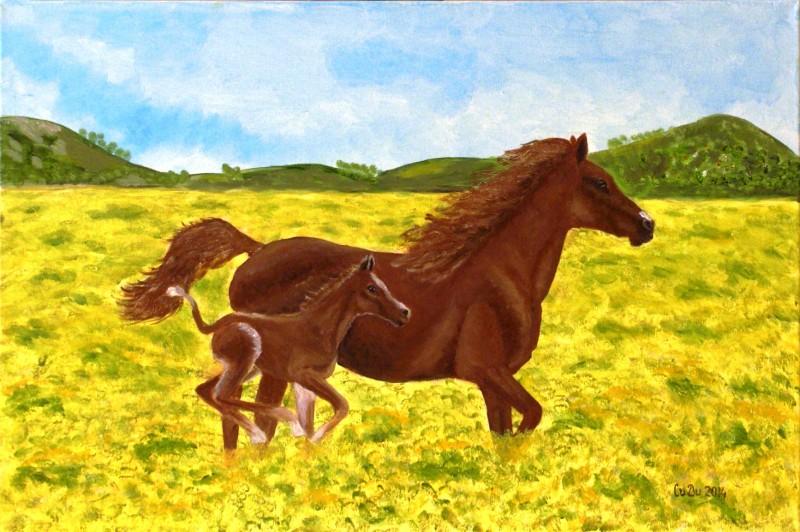 kobila s kontshe