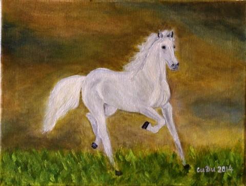 kon i burja